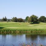 golf-mergelhof (43)